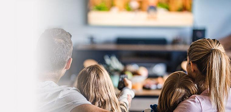 Television Installation Services
