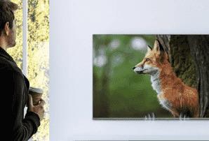 Hisense 2021 8K ULED TV | The Good Guys