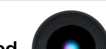 Apple Homepod | The Good Guys