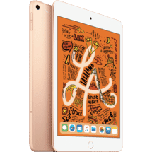 AppleiPad Mini Wi-Fi 64GB - Gold50064941